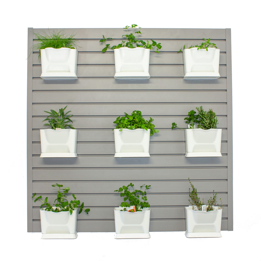 Stor-A-Wall - Hanging Herb Garden Kit - Ace of Space