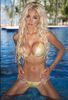 Custom Diamond Princess (color crystals main color used) Limited time $299 Competition Bikini