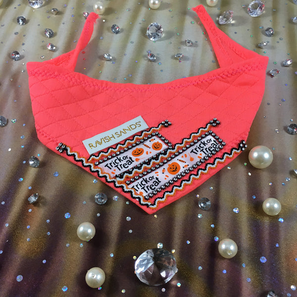 Ravish Pet Designer Halloween Rhinestone Scarf (neon coral/orange) $28.99