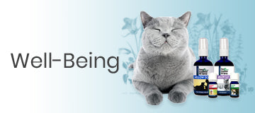 Pet Well being products