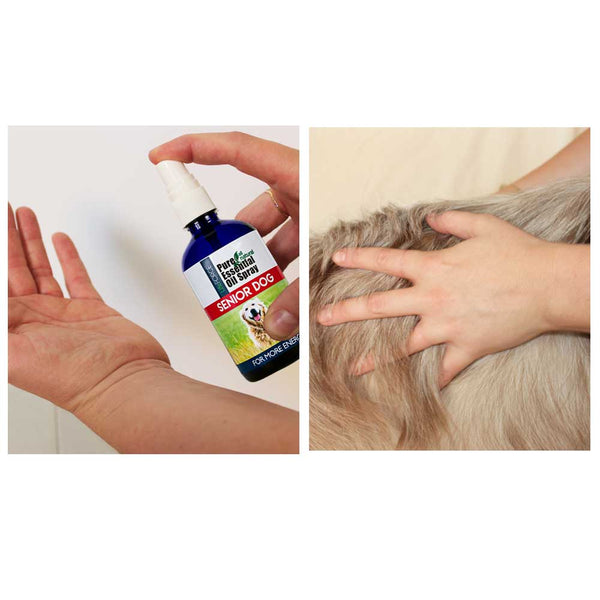 Senior Dog Essential Oil Spray 100ml