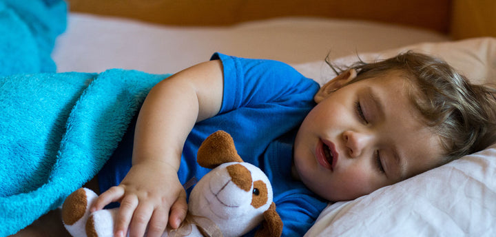 Toddler sleeping with a stuffed animal