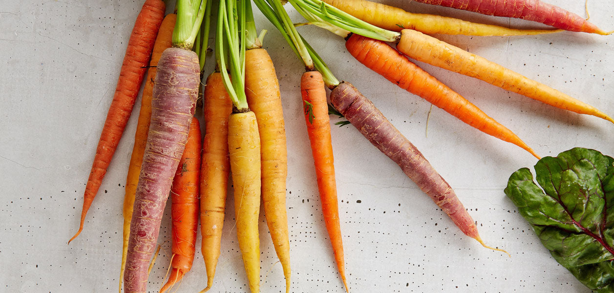Red, orange and yellow carrots with stems laid out on a white surface