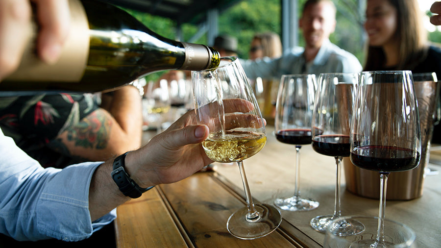 A Must Read Wine Tips for the Wine Newbies