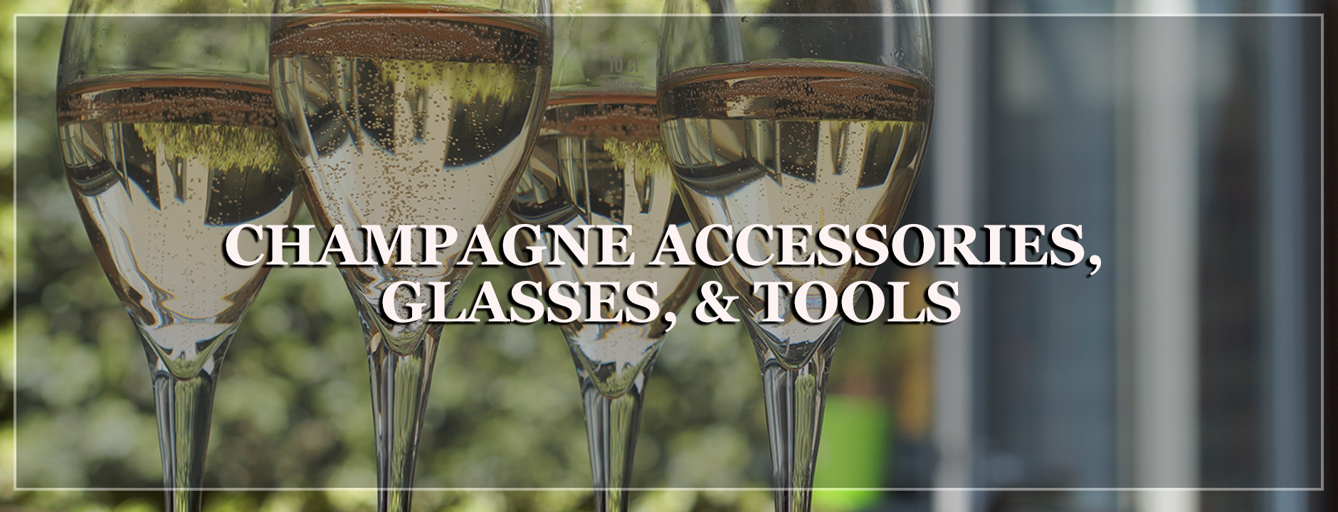Champagne accessories - wine is life store