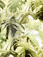 Load image into Gallery viewer, Tektura-Monstera