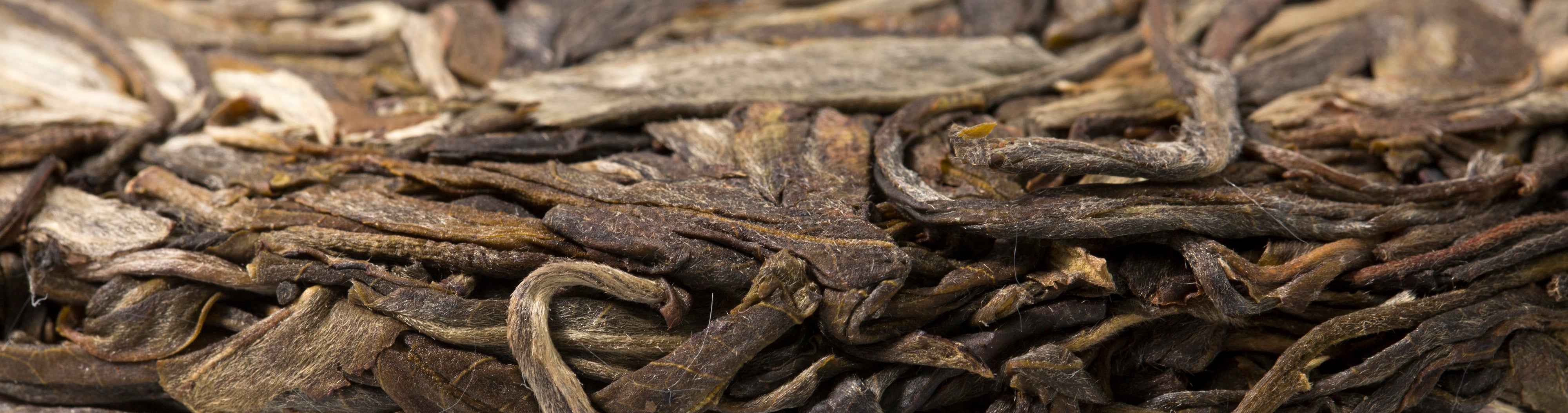 Basic Understanding of Pu erh Tea and Its Benefits