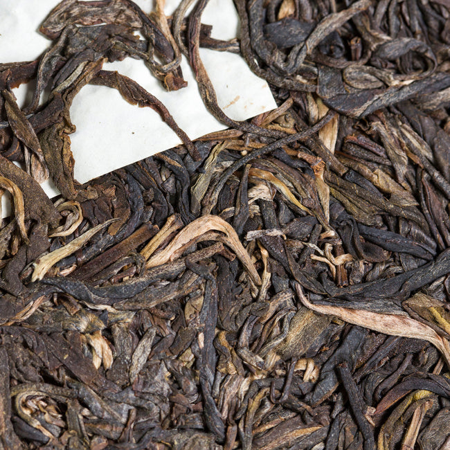 blended six mountain pu erh tea