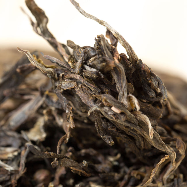 lao ban zhang 2013 pried-off pu erh tea