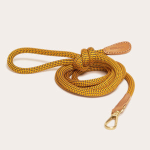 Yellow Lacket Leash