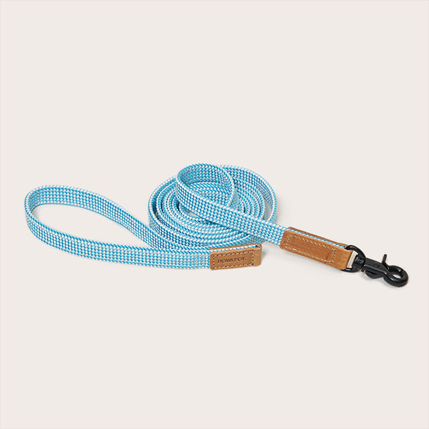 Cloud blue ribbon type Leash