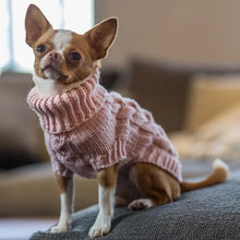 Load image into Gallery viewer, Supreme Dog Sweater Pink Powder