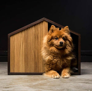 Effect wooden house for small dogs and cats. The concept-pet. interior collection.