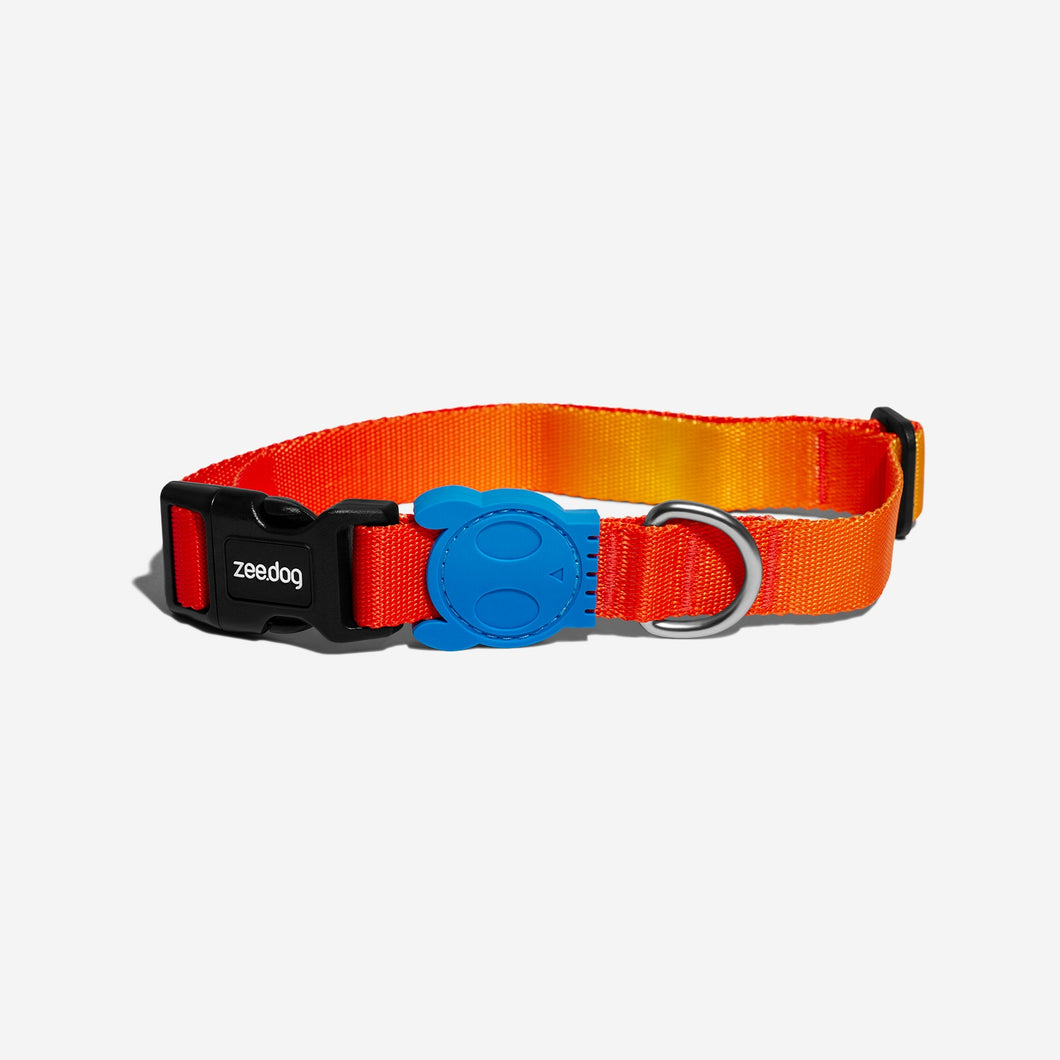 Solaris dog collar