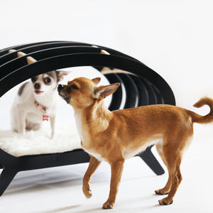 Stripe dog day bed. Interior collection Concept-pet.