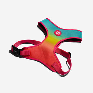 Citrus harness for dogs