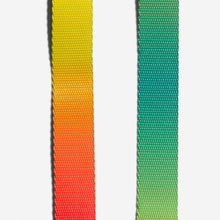 Load image into Gallery viewer, Citrus Zee.Dog collar