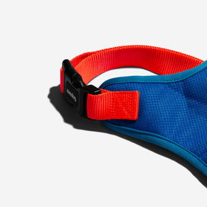 Tide harness for dogs