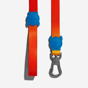 Solaris dog Leash
