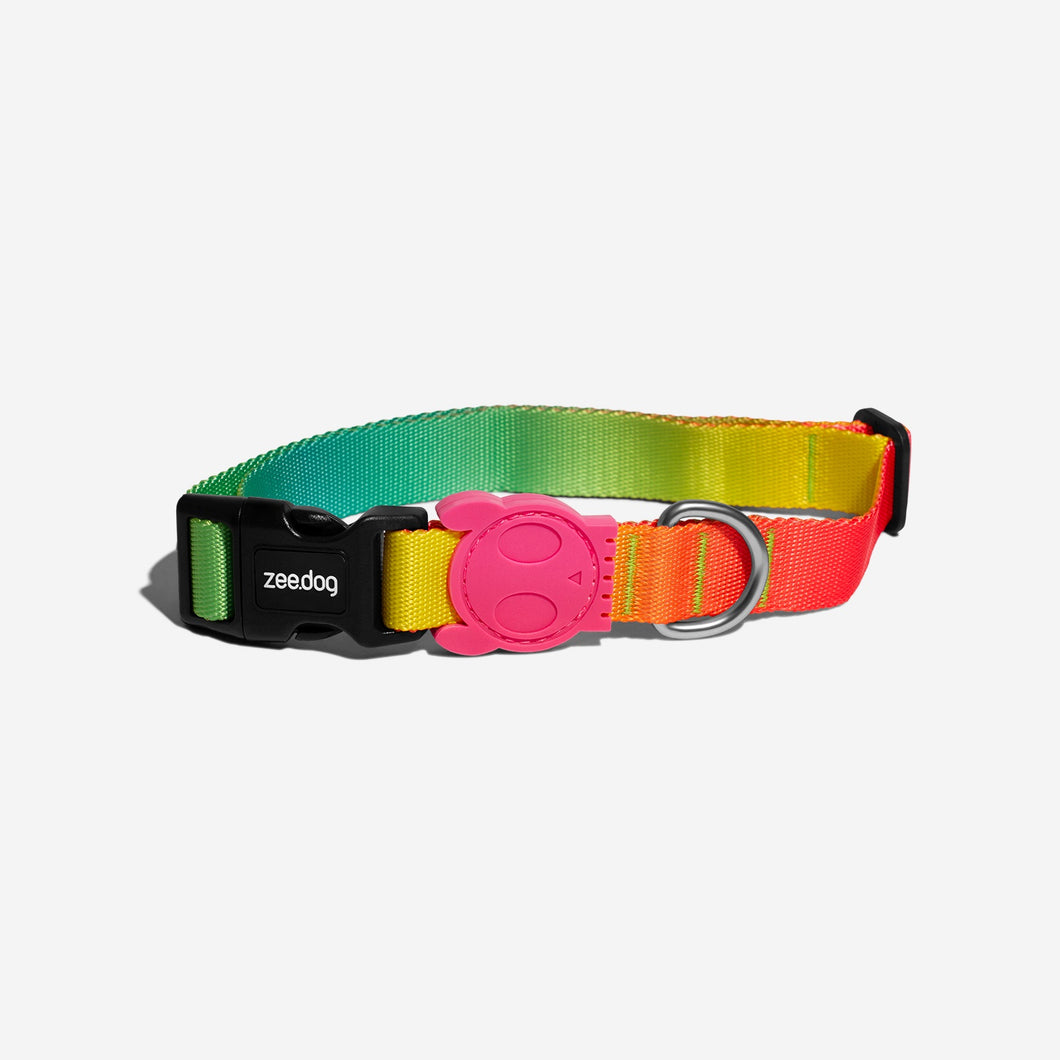 Citrus Zee.Dog collar
