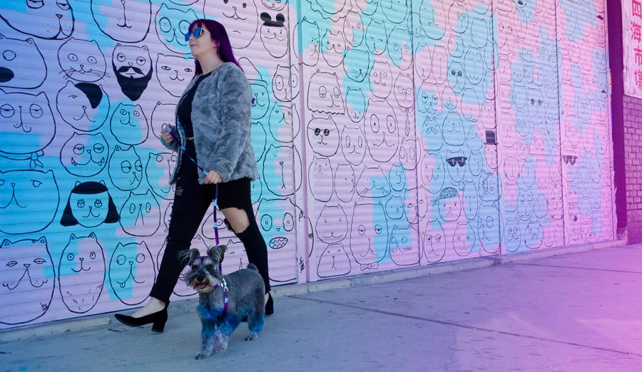 girl walking dog in front of colorful wall