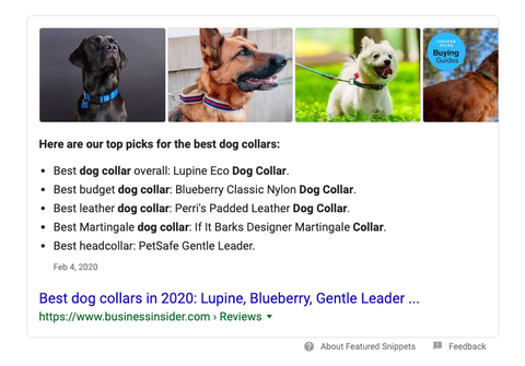 Google Search feature for comfortable dog collars