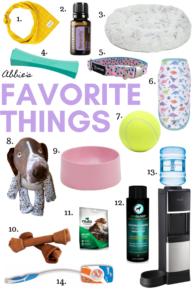 Gal's Best Friend 2019 Christmas Gift Guide for Abbie