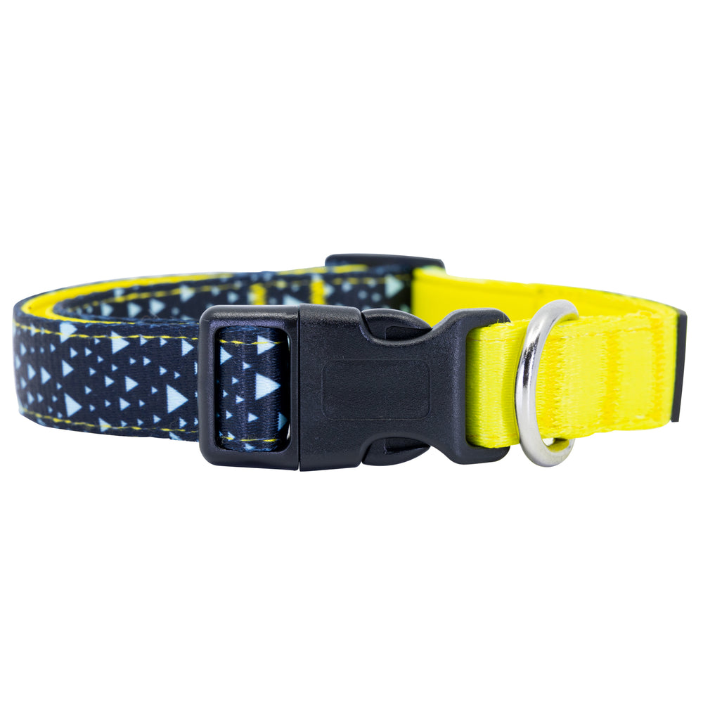 Asteroid Blues Dog Collar Buckle and D-Ring Product Shot