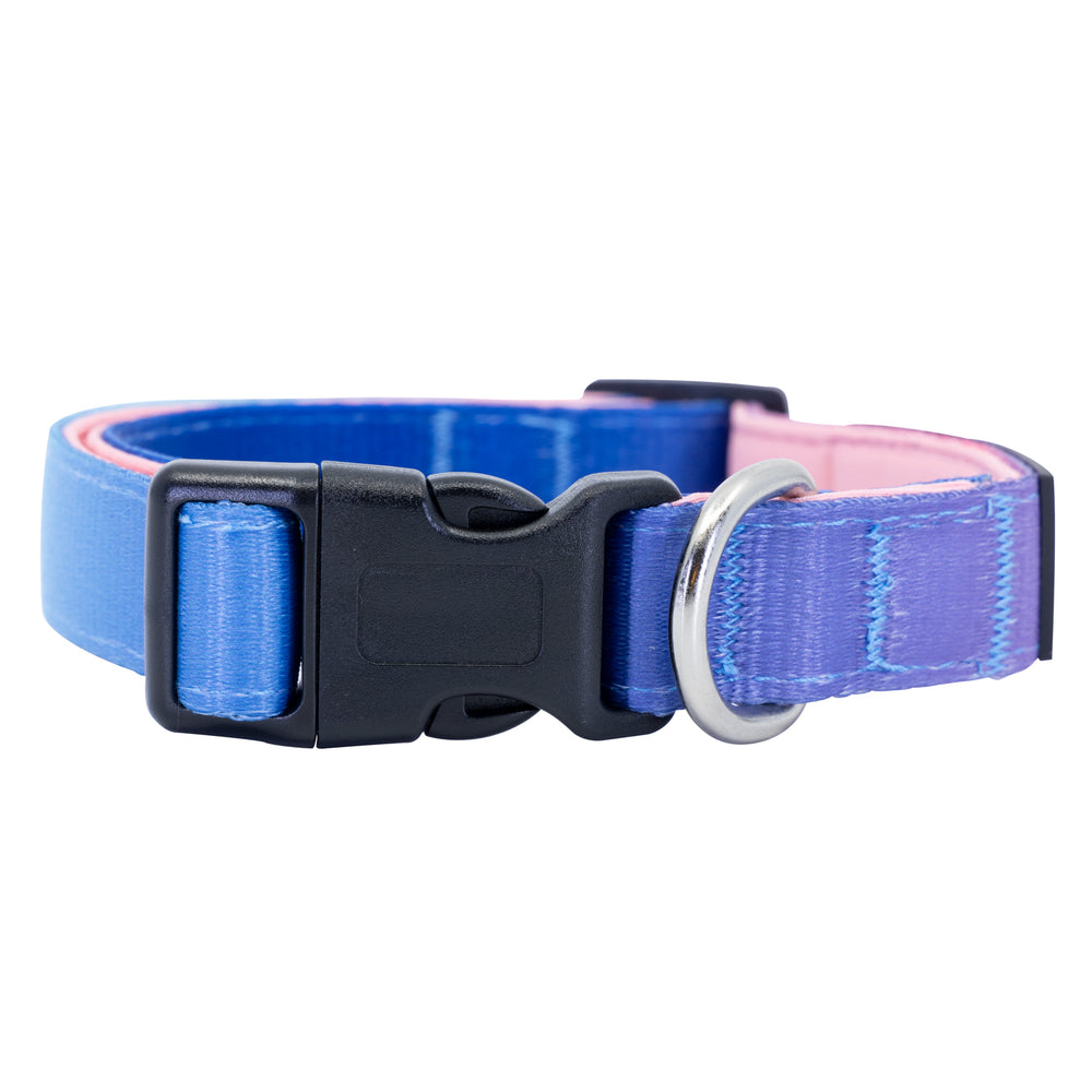 Candy Confection Dog Collar Buckle and D-Ring Product Shot