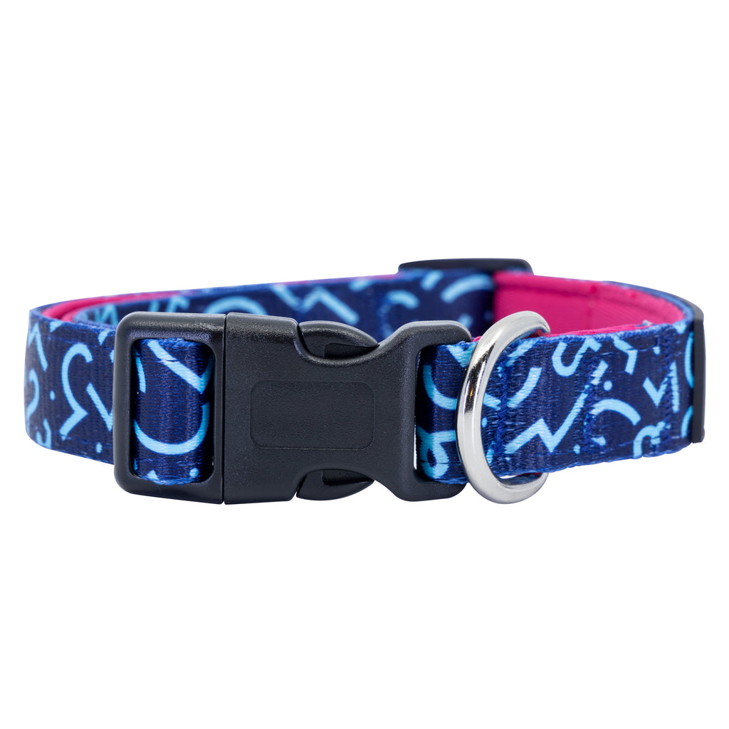 Groovin' Graffiti Dog Collar Buckle and D-Ring Product Shot