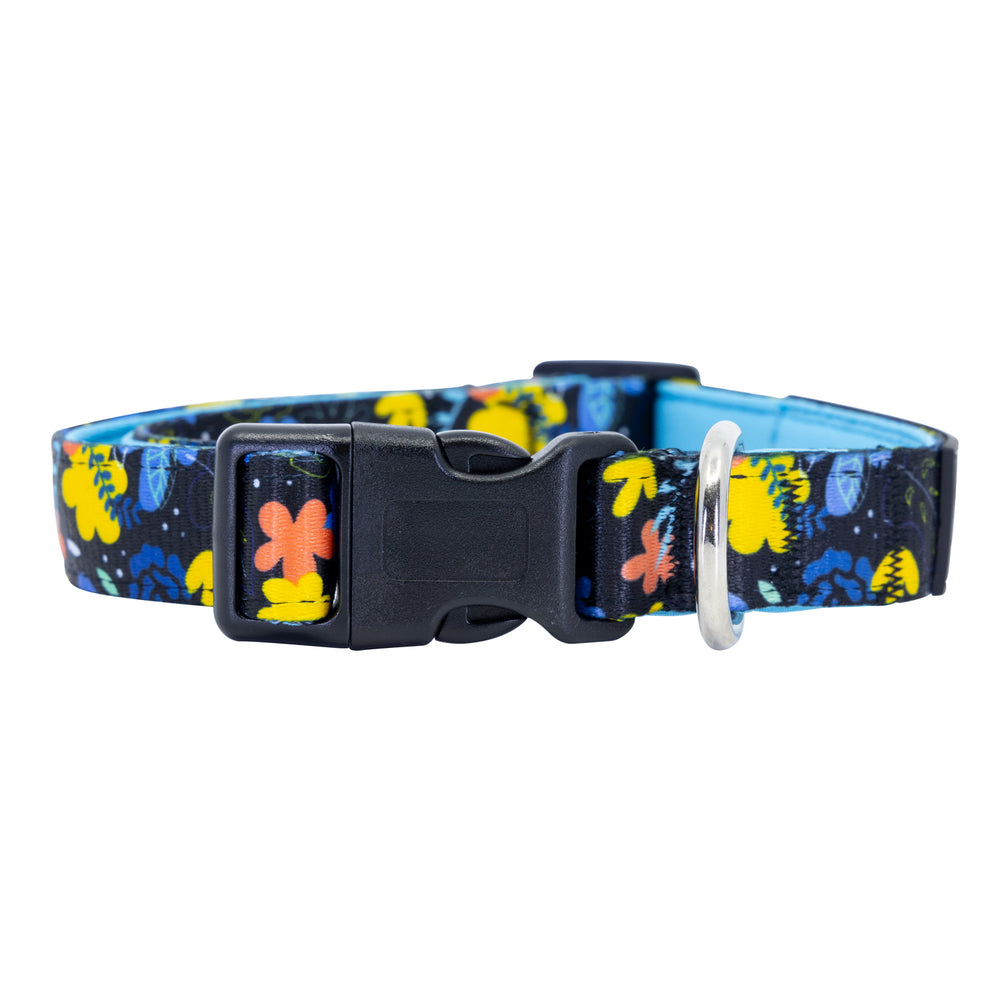 Nights-a-Bloom Dog Collar Buckle and D-Ring Product Shot