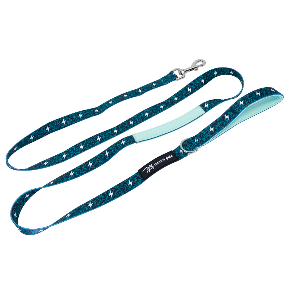 Circuit Green Dog Leash
