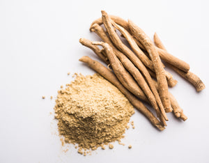 Ashwagandha for Dogs: A Natural Guide to Canine Health