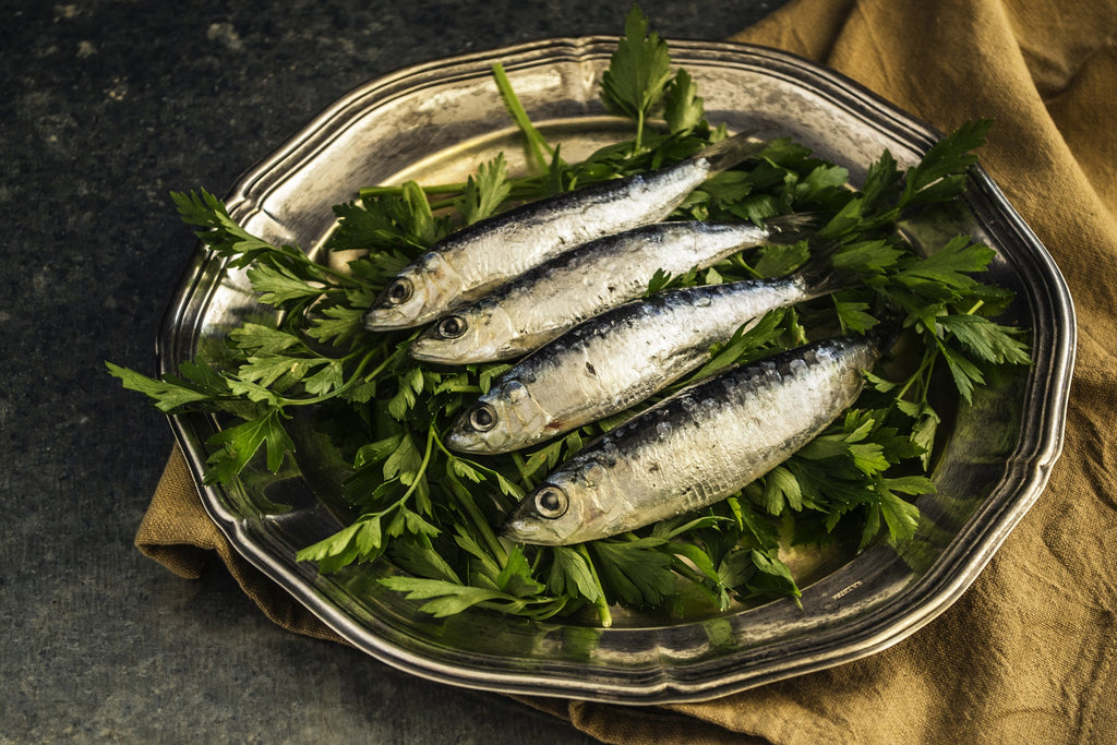 sardines on plate, are sardines good for skin?