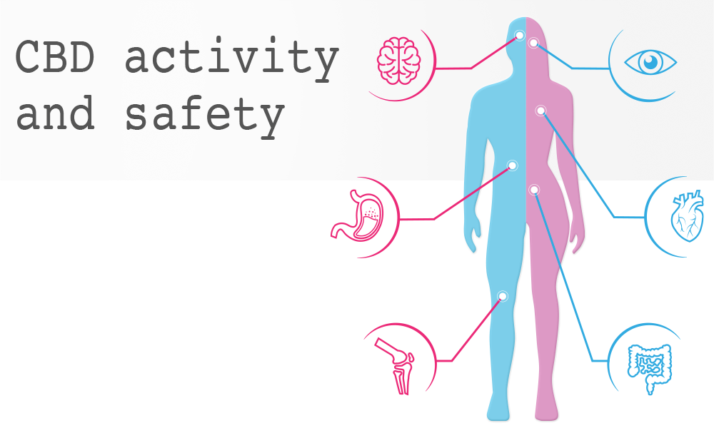 CBD activity and safety