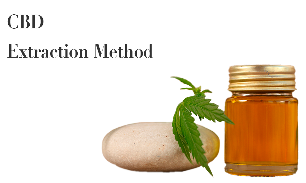 CBD Extraction Method