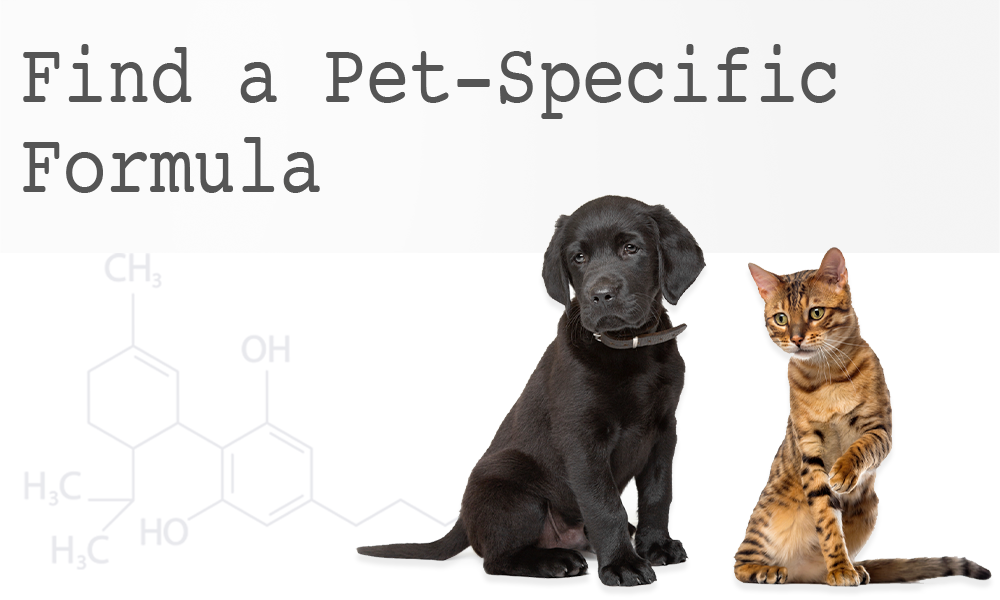 Find a Pet-Specific Formula