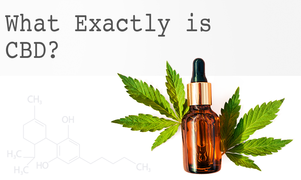 What Exactly is CBD?