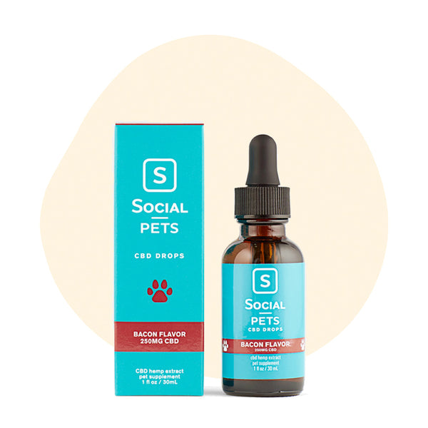 Social CBD Pets Bacon Broad Spectrum Drops 250mg - Erthbay