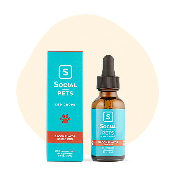 Social CBD Pets Bacon Broad Spectrum Drops - ErthBay