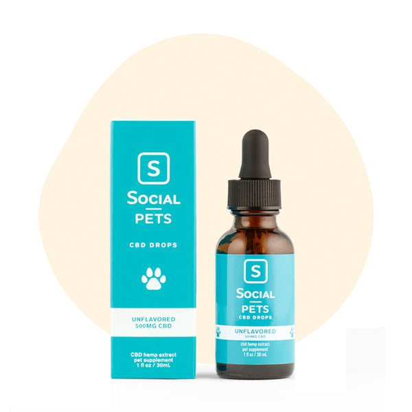 Social CBD Pets Unflavored Broad Spectrum Drops - ErthBay