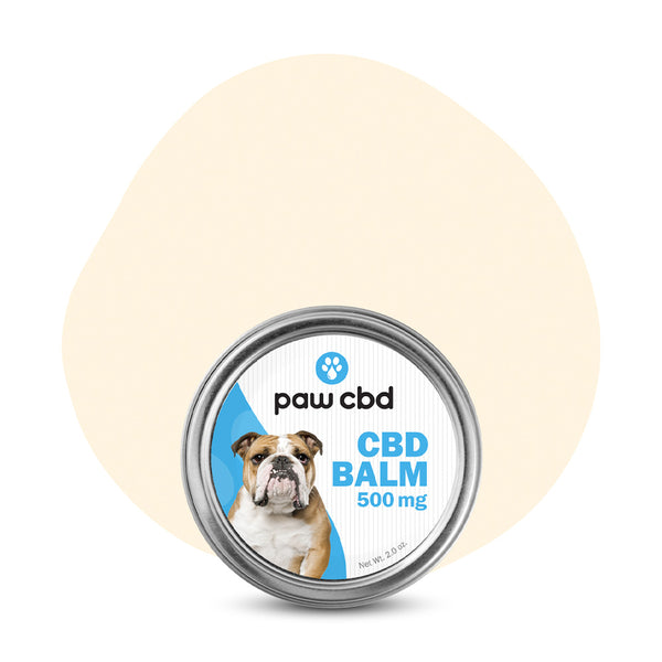 cbdMD CBD Pet Topical Paw Balm 500mg - ErthBay