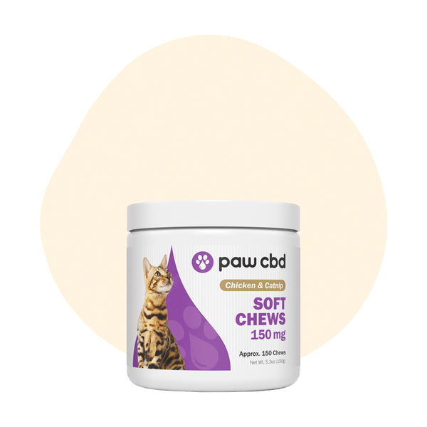 cbdMD CBD Pet Treat Chicken and Catnip Feline Soft Chews 150mg - ErthBay