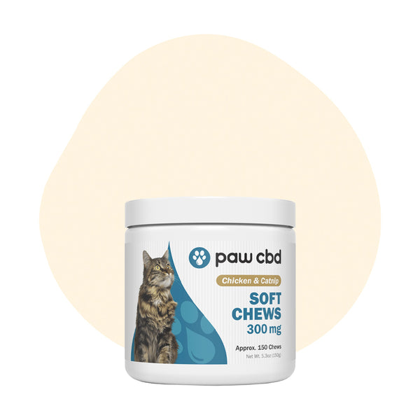 cbdMD CBD Pet Treat Chicken and Catnip Feline Soft Chews 300mg - ErthBay