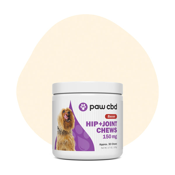 cbdMD CBD Pet Treats Bacon Canine Hip+Joint Chews 150mg - ErthBay