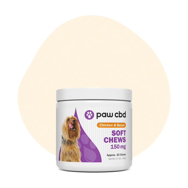 cbdMD CBD Pet Treats Chicken & Bacon Canine Soft Chews 150mg - ErthBay