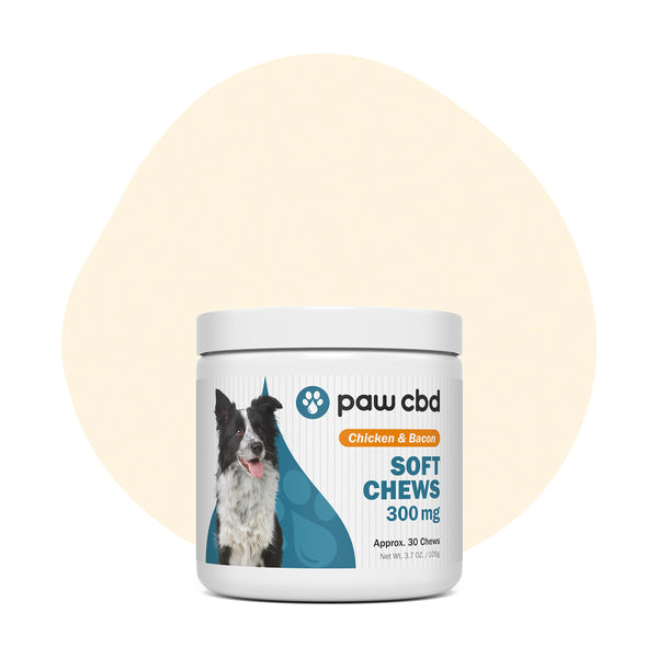 cbdMD CBD Pet Treats Chicken & Bacon Canine Soft Chews 300mg - ErthBay