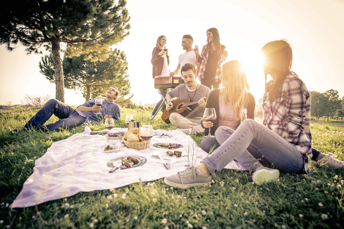 friends gather around a picnic while listening to guitar