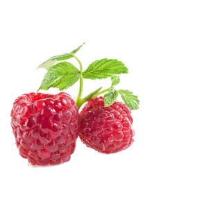 lemon-raspberry background image, left side