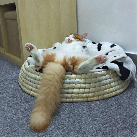 100% Handmade Straw Cat Bed House Pet Bed